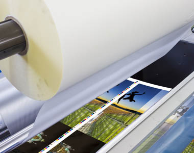 Encapsulated & laminated posters